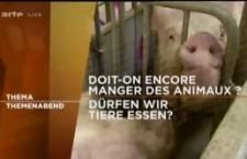 Thema Arte : doit-on encore manger des animaux ? (30 juillet 2013)
