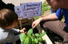 Plantons dans la ville, avec les Incroyables Comestibles Paris (24 août 2013)