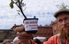 Verbalisé pour avoir Vendu des Tomates Hors Catalogue (AgoravoxTV)