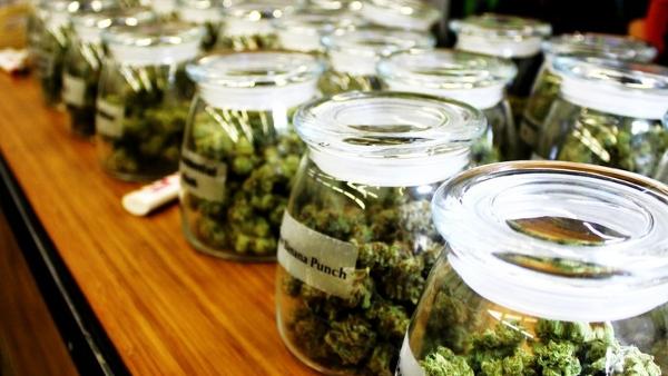 les cons quences de la l galisation du cannabis dans le. Black Bedroom Furniture Sets. Home Design Ideas