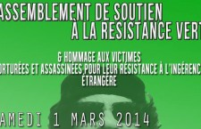 Rassemblement de soutien à la population libyenne et aux forces de résistance « Verte » à Paris (1er mars 2014)