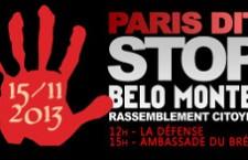 Manifestation à Paris contre le Barage de Belo Monte (15 novembre 2013)
