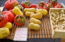 Colloque sur la Politique Agricole Commune (du 12 au 17 novembre 2013)