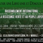 Rassemblement en soutien à la Résistance Verte et au peuple libyen (29 mars 2014)
