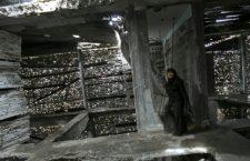 Gaza. La femme qui transformait les ruines en œuvres d'art